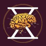 CorteXscape | Annemasse